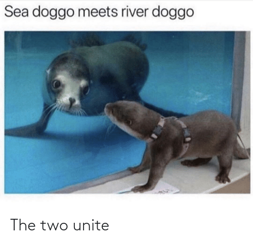two: The two unite