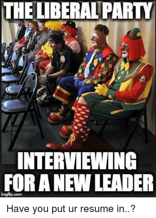 Memes, Party, and Resume: THE UBERAL PARTY  INTERVIEWING  FOR A NEW LEADER Have you put ur resume in..?