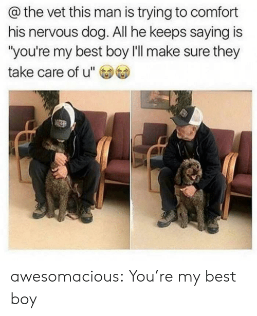 """Tumblr, Best, and Blog: @the vet this man is trying to comfort  his nervous dog. All he keeps saying is  """"you're my best boy l'll make sure they  take care of u"""" awesomacious:  You're my best boy"""