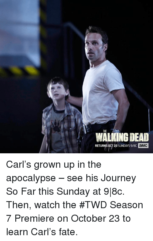 Walking Dead Returns: THE  WALKING DEAD  RETURNS  OCT 23 SUNDAYs9/8c aMC Carl's grown up in the apocalypse – see his Journey So Far this Sunday at 9|8c.   Then, watch the #TWD Season 7 Premiere on October 23 to learn Carl's fate.