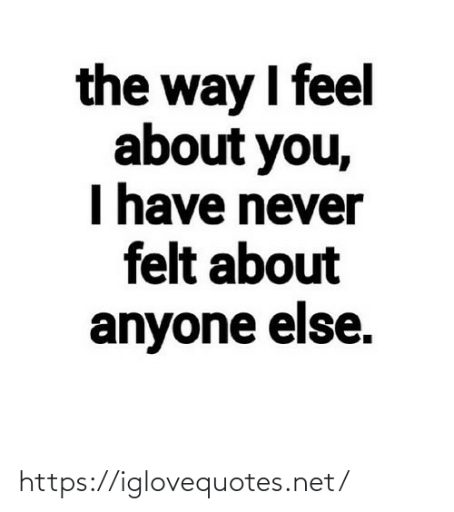 Have Never: the way I feel  about you,  I have never  felt about  anyone else. https://iglovequotes.net/