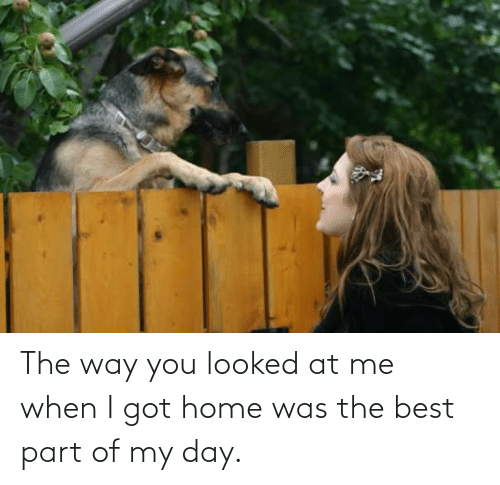 You Looked: The way you looked at me when I got home was the best part of my day.