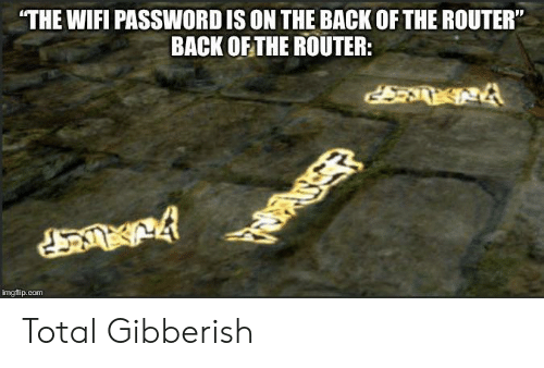 """Router: THE WIFI PASSWORD IS ON THE BACK OF THE ROUTER""""  BACK OF THE ROUTER:  imgflip.com Total Gibberish"""