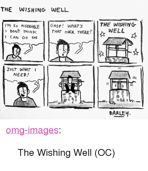 """Wishing Well: THE WISHING WELL  I'M So MISERABLGASP WHATS  I dONT THINK  THE WISHING  WELL  THAT OER THERE  CAN Go ON  NEED!  DARLEM. <p><a href=""""https://omg-images.tumblr.com/post/163789800212/the-wishing-well-oc"""" class=""""tumblr_blog"""">omg-images</a>:</p>  <blockquote><p>The Wishing Well (OC)</p></blockquote>"""