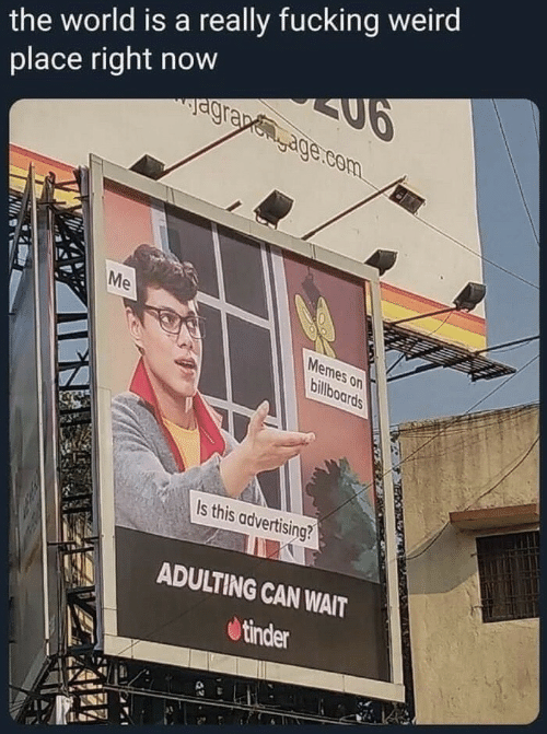 fucking weird: the world is a really fucking weird  place right now  agrapegage.com  Me  Memes on  billboards  Is this advertising?  ADULTING CAN WAIT  tinder