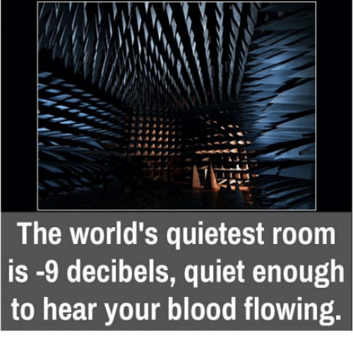 The World\'s Quietest Room Is -9 Decibels Quiet Enough to Hear Your ...