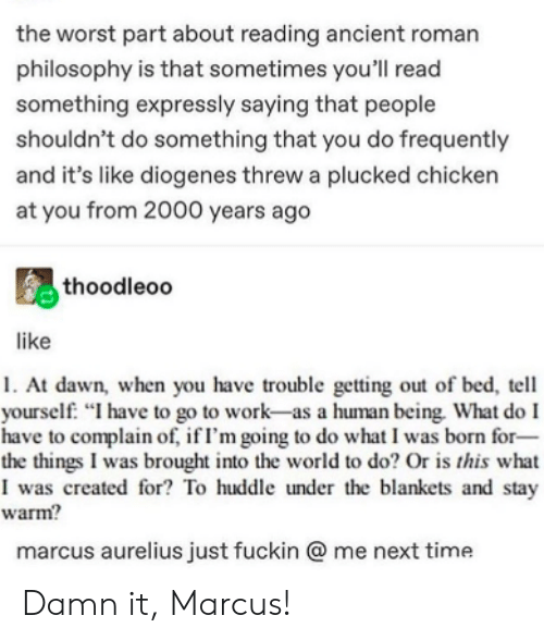 """Philosophy: the worst part about reading ancient roman  philosophy is that sometimes you'll read  something expressly saying that people  shouldn't do something that you do frequently  and it's like diogenes threw a plucked chicken  at you from 2000 years ago  thoodleoo  like  1. At dawn, when you have trouble getting out of bed, tell  yourself. """"I have to go to work-as a human being. What do I  have to complain of, if I'm going to do what I was born for-  the things I was brought into the world to do? Or is this what  I was created for? To huddle under the blankets and stay  warm?  marcus aurelius just fuckin @ me next time Damn it, Marcus!"""