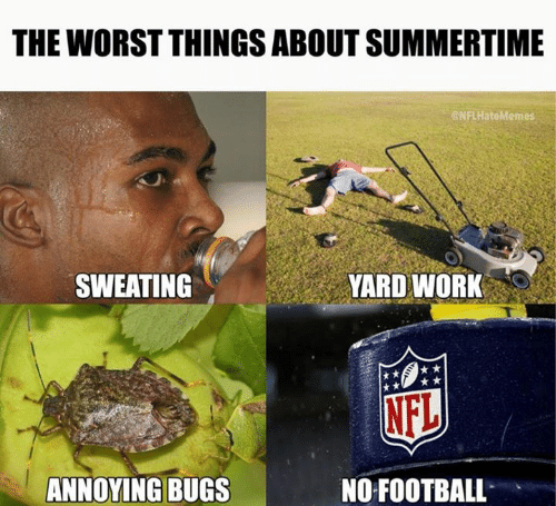 Football, Nfl, and The Worst: THE WORST THINGS ABOUT SUMMERTIME  NFLHateMemes  SWEATING  YARD WORK  NFL  ANNOYING BUGS  NO FOOTBALL