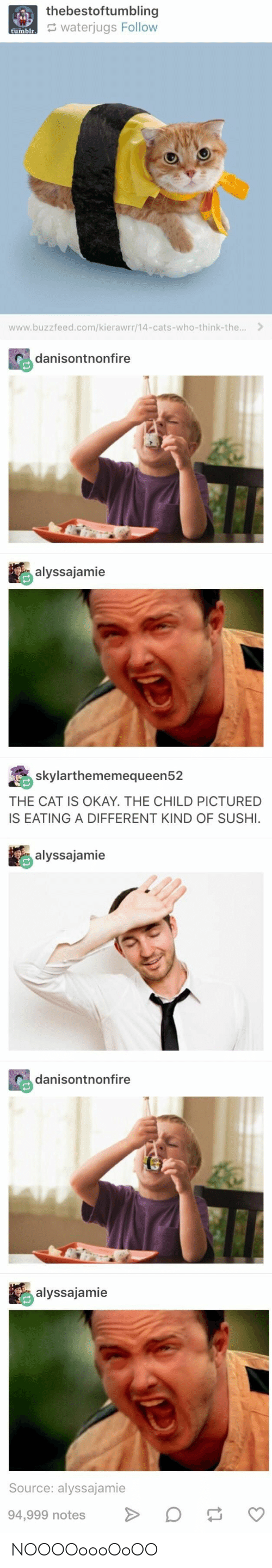 Sushi: thebestoftumbling  waterjugs Follow  tumblr  www.buzzfeed.com/kierawrr/14-cats-who-think-the...  danisontnonfire  alyssajamie  skylarthememequeen52  THE CAT IS OKAY. THE CHILD PICTURED  IS EATING A DIFFERENT KIND OF SUSHI.  alyssajamie  danisontnonfire  alyssajamie  Source: alyssajamie  94,999 notes  tl NOOOOoooOoOO