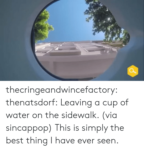 Instagram, Target, and Tumblr: thecringeandwincefactory:  thenatsdorf: Leaving a cup of water on the sidewalk. (via sincappop) This is simply the best thing I have ever seen.