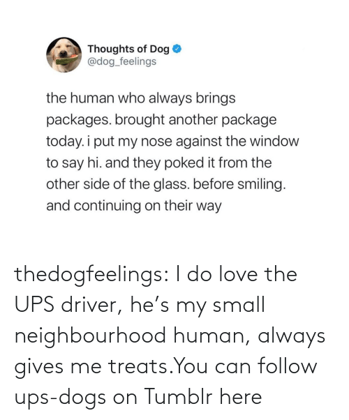 hes: thedogfeelings:  I do love the UPS driver, he's my small neighbourhood human, always gives me treats.You can follow ups-dogs on Tumblr here