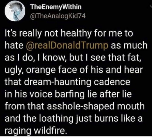 Haunting: TheEnemyWithin  @TheAnalogKid74  It's really not healthy for me to  hate @realDonaldTrump as much  as I do, I know, but I see that fat,  ugly, orange face of his and hear  that dream-haunting cadence  in his voice barfing lie after lie  from that asshole-shaped mouth  and the loathing just burns like a  raging wildfire.