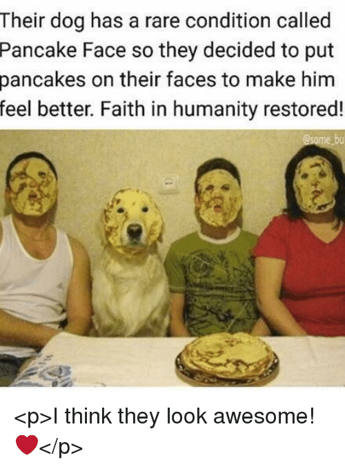 Awesome, Faith, and Humanity: Their dog has a rare condition called  Pancake Face so they decided to put  pancakes on their faces to make him  feel better. Faith in humanity restored! <p>I think they look awesome! ❤️</p>