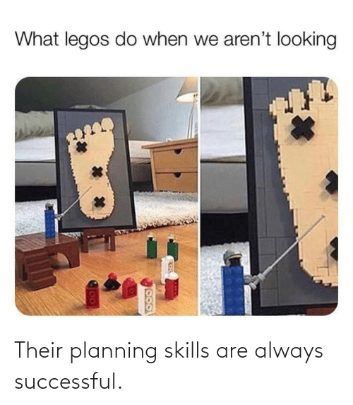 Planning: Their planning skills are always successful.