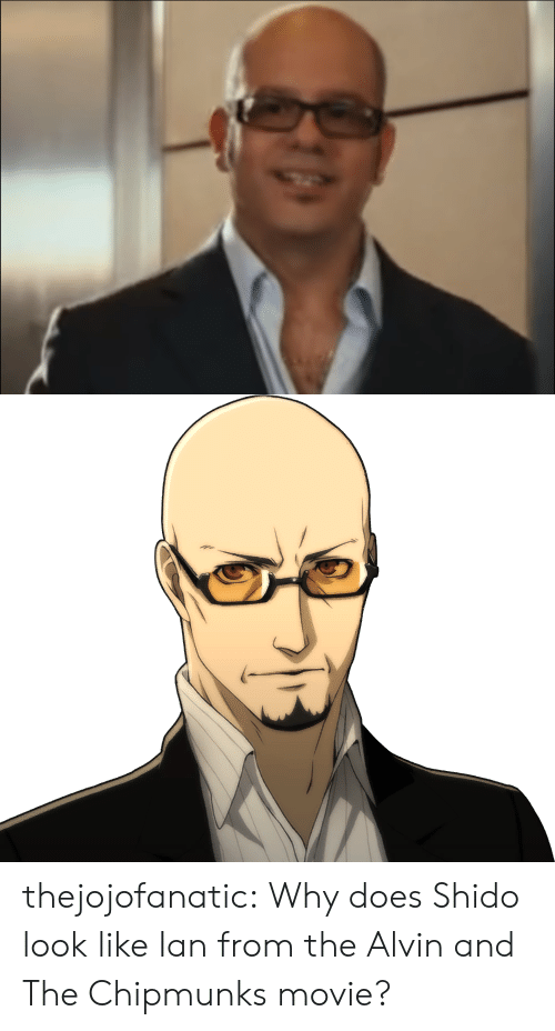 Tumblr, Blog, and Movie: thejojofanatic:    Why does Shido look like Ian from the Alvin and The Chipmunks movie?