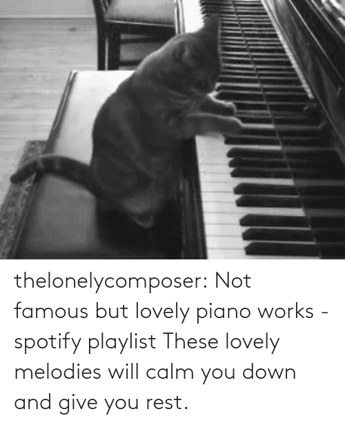 rest: thelonelycomposer: Not famous but lovely piano works -spotify playlist These lovely melodies will calm you down and give you rest.