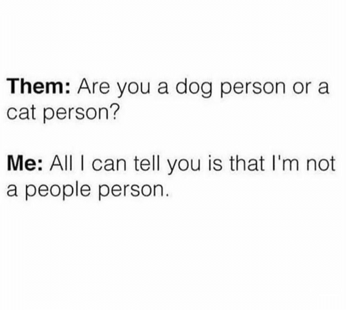 Cat Person: Them: Are you a dog person or a  cat person?  Me: All I can tell you is that I'm not  a people person.