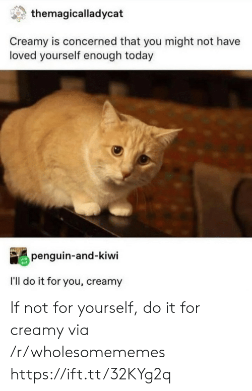 kiwi: themagicalladycat  Creamy is concerned that you might not have  loved yourself enough today  penguin-and-kiwi  I'll do it for you, creamy If not for yourself, do it for creamy via /r/wholesomememes https://ift.tt/32KYg2q