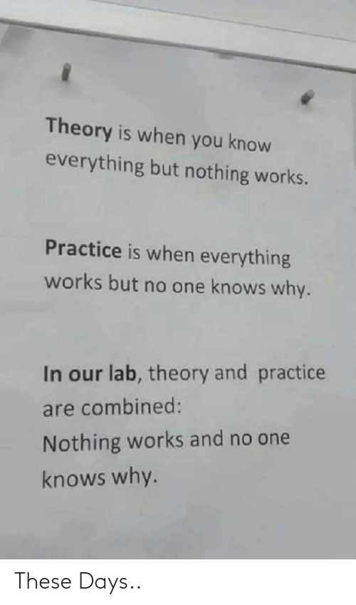 Lab: Theory is when you know  everything but nothing works.  Practice is when everything  works but no one knows why.  In our lab, theory and practice  are combined:  Nothing works and no one  knows why. These Days..