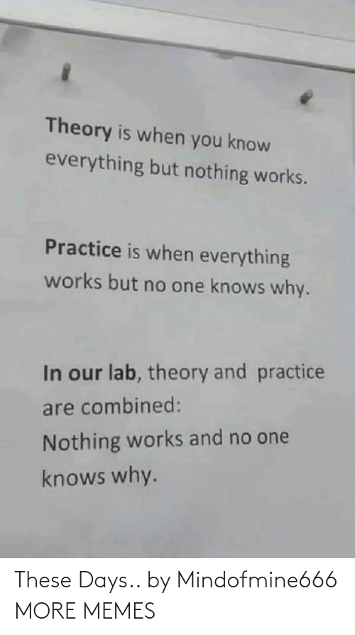 Lab: Theory is when you know  everything but nothing works.  Practice is when everything  works but no one knows why.  In our lab, theory and practice  are combined:  Nothing works and no one  knows why. These Days.. by Mindofmine666 MORE MEMES