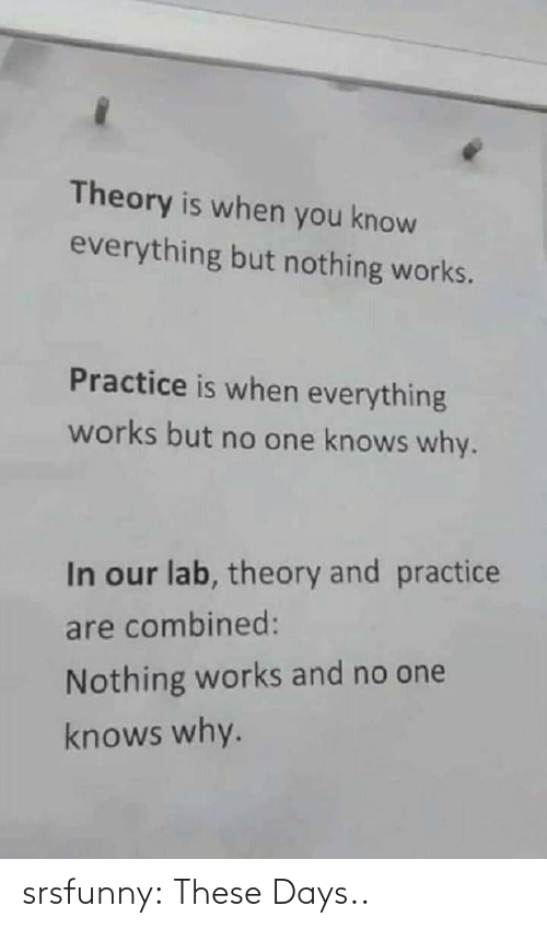 Lab: Theory is when you know  everything but nothing works.  Practice is when everything  works but no one knows why.  In our lab, theory and practice  are combined:  Nothing works and no one  knows why. srsfunny:  These Days..