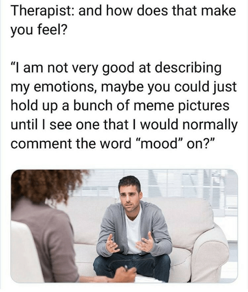 "therapist: Therapist: and how does that make  you feel?  ""I am not very good at describing  my emotions, maybe you could just  hold up a bunch of meme pictures  until I see one that I would normally  comment the word ""mood"" on?"""
