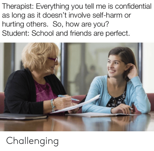 Friends, School, and How: Therapist: Everything you tell me is confidential  as long as it doesn't involve self-harm or  hurting others. So, how are you?  Student: School and friends are perfect. Challenging