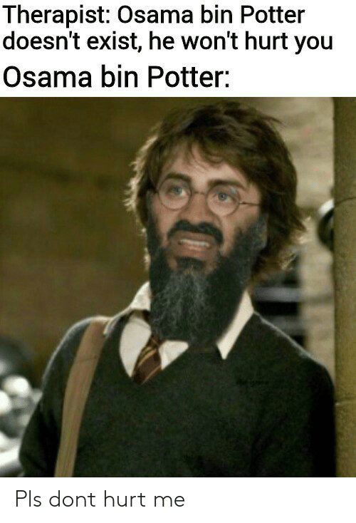 Potter, Don, and You: Therapist: Osama bin Potter  doesn't exist, he won't hurt you  Osama bin Potter: Pls dont hurt me