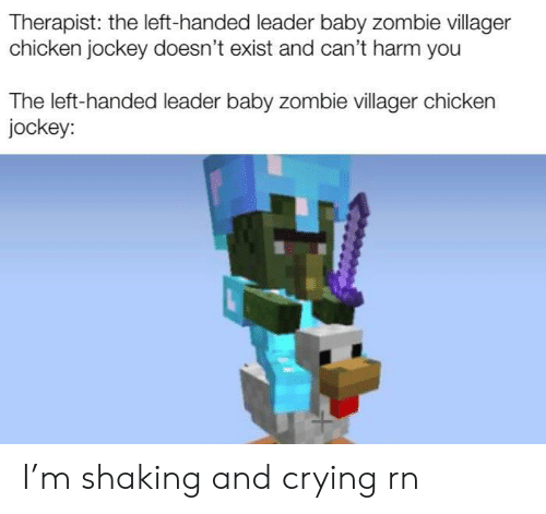 villager: Therapist: the left-handed leader baby zombie villager  chicken jockey doesn't exist and can't harm you  The left-handed leader baby zombie villager chicken  jockey: I'm shaking and crying rn
