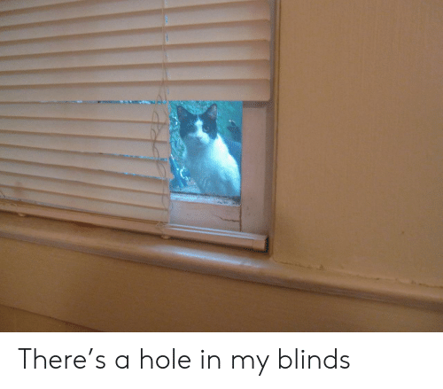 blinds: There's a hole in my blinds
