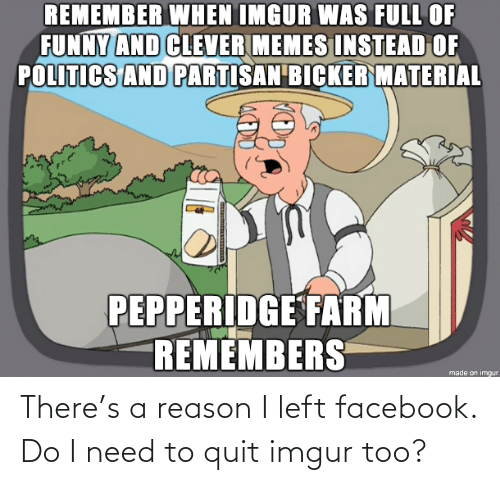 quit: There's a reason I left facebook. Do I need to quit imgur too?