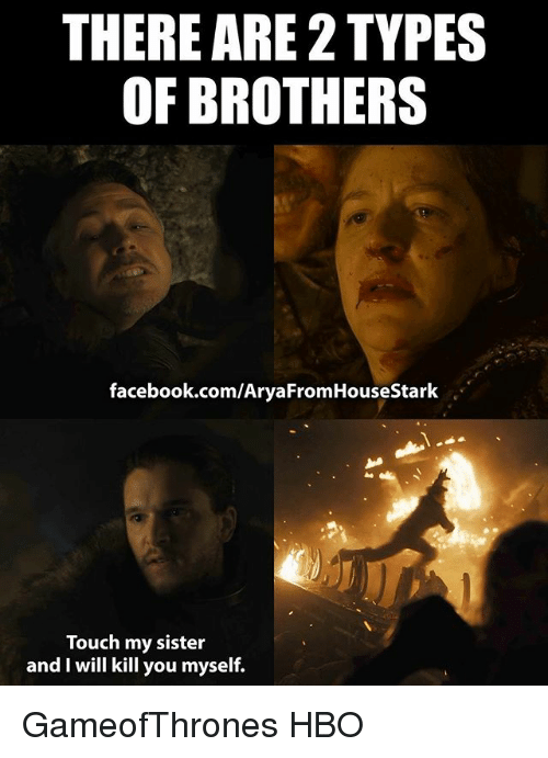 THERE ARE 2 TYPES OF BROTHERS facebookcomAryaFromHouseStark