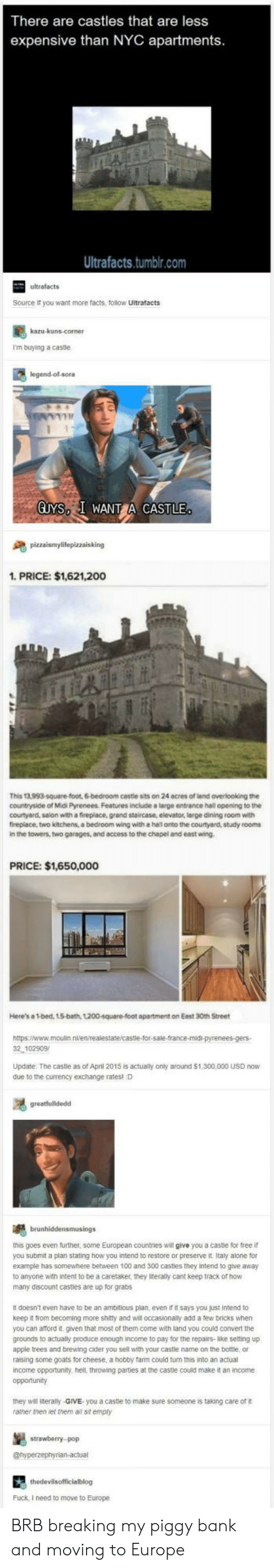 sora: There are castles that are less  expensive than NYC apartments  Ultrafacts.tumblr.com  ultrafacts  Source it you want more facts, follow Ultrafacts  I'm buying a castle  legend-ol-sora  GUYS I WANT CASTLE  1. PRICE: $1,621,200  This 13,993-square-foot, 6-bedroom cestle sits on 24 acres of land overlooking the  countryside of Midi Pyrenees. Features include a large entrance hall opening to the  courtyard, salon with a fireplace, grand staircase, elevator, large dining room with  fireplace, two kitchens, a bedroom wing with a hal onto the courtyard, study rooms  in the towers, two garages, and access to the chapel and east wing  PRICE: $1,650,000  Here's a 1-bed, 15-bath, 1200-square-foot apartment on Eest 30th Street  2 102909  Update The castle as of April 2015 is actualy only around $1,300,000 USD now  due to the currency exchange ratesl D  this goes even further, some European countries will give you a castle for free if  you submit a plan stating how you intend to restore or preserve it Italy alone for  example has somewhere between 100 and 300 castles they intend to give away  to anyone with intent to be a caretaker, they iteraly cant keep track of how  many discount casties are up for grabs  It doesn't even have to be an ambitious plan, even it it says you just intend to  keep it from becoming more shitty and will occasionally add a few bricks when  you can aford it. given that most of them come with land you could convert the  grounds to actually produce enough income to pay for the repairs-like setting up  apple trees and brewing cider you sell with your castle name on the bottle or  raising some goats for cheese, a hobby farm could turn this into an actual  income opportunity. hell, throwing parties at the caste could make it an income  opportunity  they will literally-GIVE you a caste to make sure someone is taking care of  ramer men let them a sit empty  stowebery  Fuck, I need to move to Europe BRB breaking my piggy bank and moving to Europe