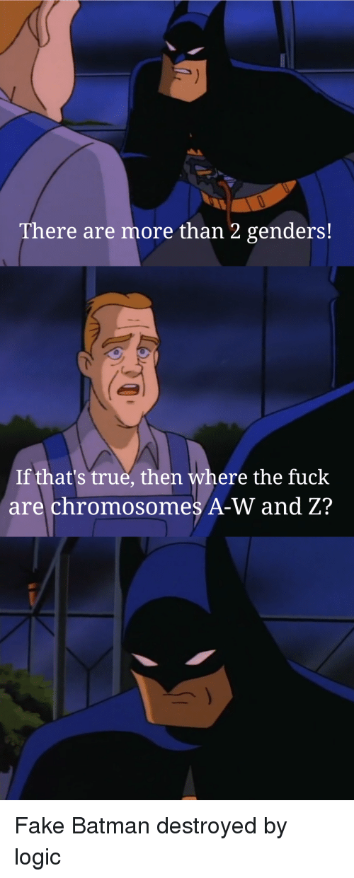 Batman, Fake, and Logic: There are more than 2 genders!  If that's true, then where the fuck  are chromosomes A-W and Z?