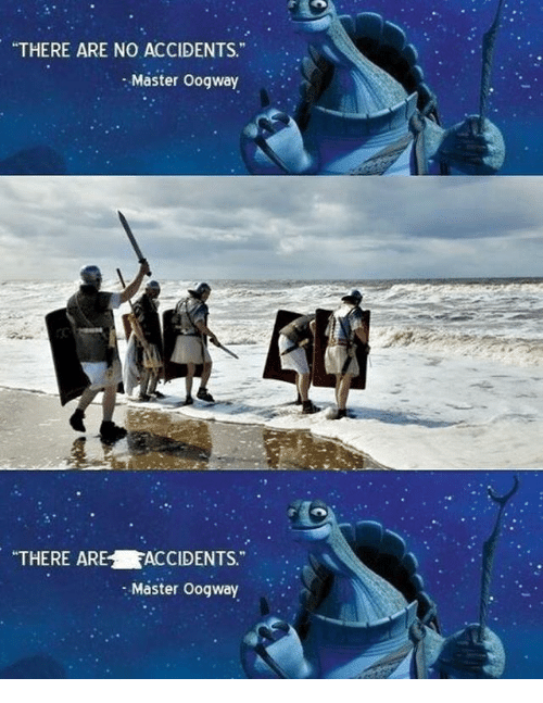 There Are No Accidents Master Oogway There Arefaccidents Master
