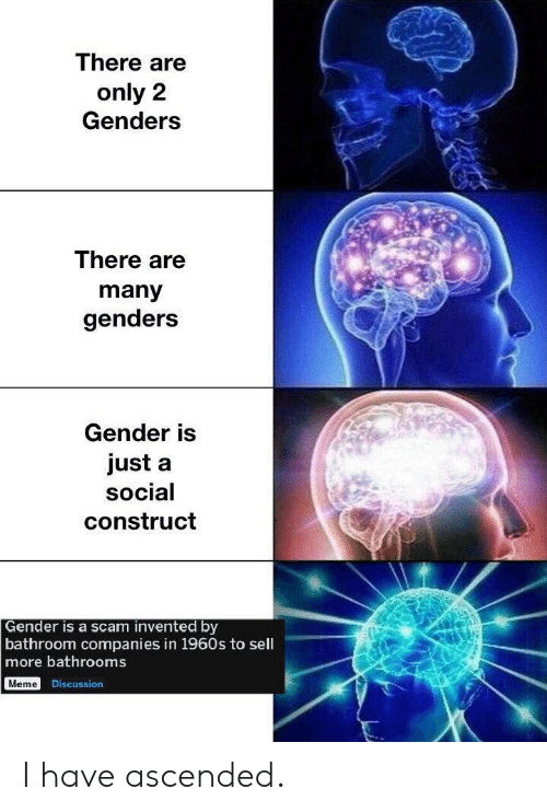 Meme, Gender, and Scam: There are  only 2  Genders  There are  many  genders  Gender is  just a  social  construct  Gender is a scam invented by  bathroom companies in 1960s to sell  more bathrooms  Meme Discussion I have ascended.