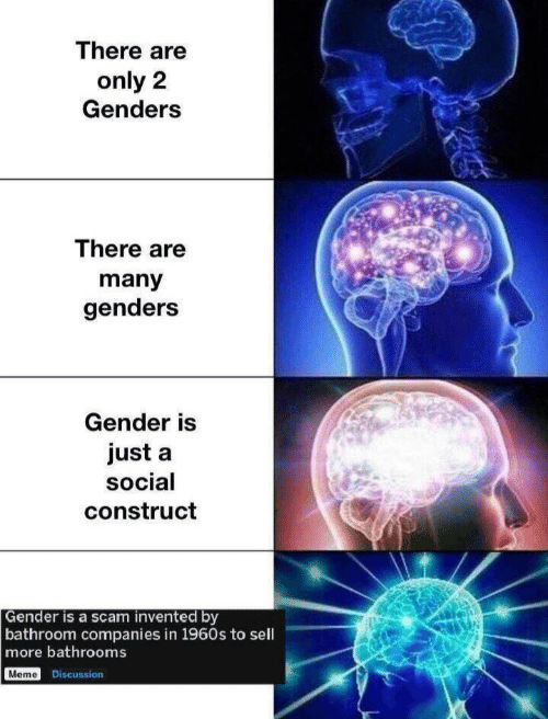 Meme, Gender, and Scam: There are  only 2  Genders  There are  many  genders  Gender is  just a  social  construct  Gender is a scam invented by  bathroom companies in 1960s to sell  more bathrooms  Meme Discussion