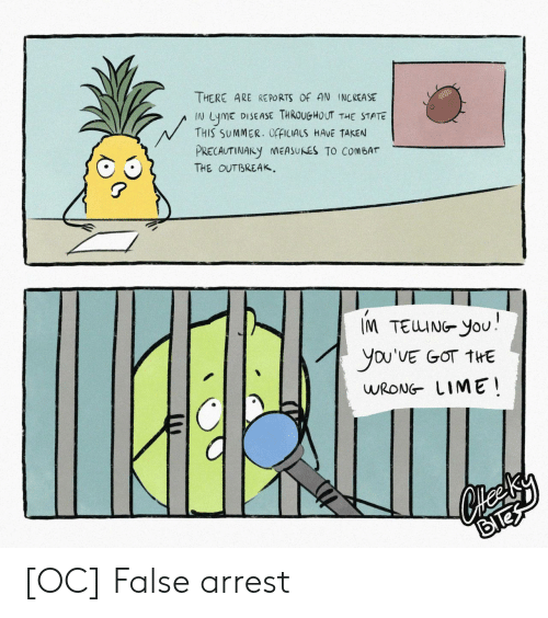 lime: THERE ARE RE PORTS OF AN INCREASE  DISEASE THROUGHOUT THE STATE  LymE  THIS SUMMER. OfFICIALS HAVE TAKEN  N  PRECAUTINARY NEASUNES TO COMBAT  THE OUTBREAK  IM TEUING YoU  you'VE GOT THE  WRONG LIME [OC] False arrest