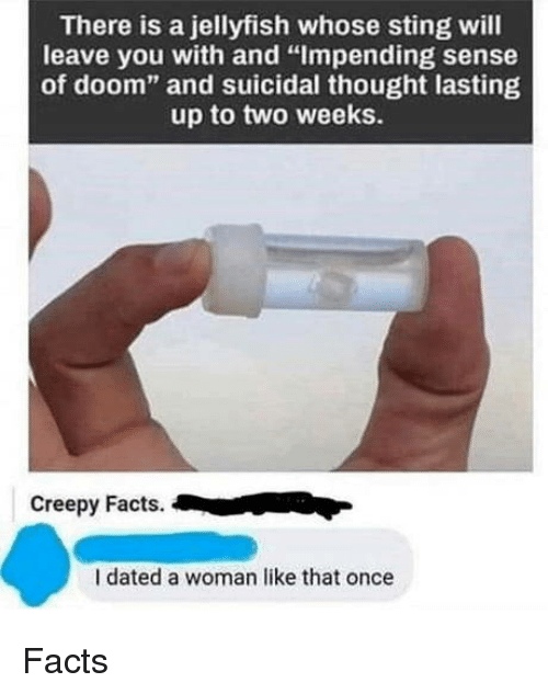 """Creepy, Facts, and Sting: There is a jellyfish whose sting will  leave you with and """"Impending sense  of doom"""" and suicidal thought lasting  up to two weeks.  Creepy Facts.  I dated a woman like that once Facts"""