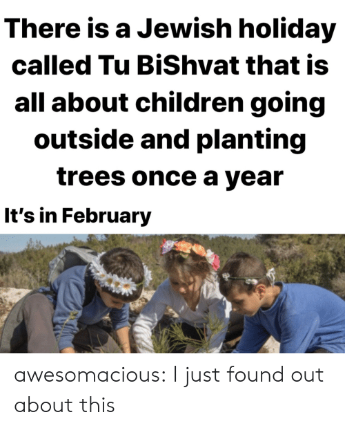february: There is a Jewish holiday  called Tu BiShvat that is  all about children going  outside and planting  trees once a year  It's in February awesomacious:  I just found out about this