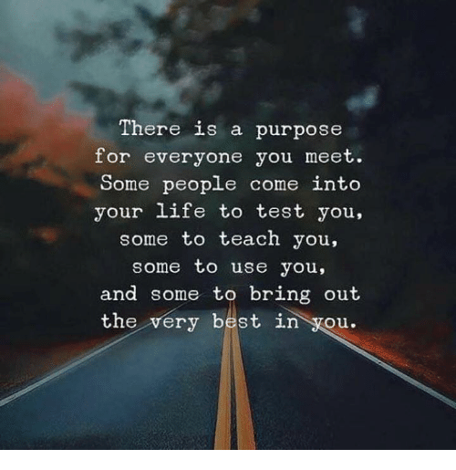 test-you: There is a purpose  for everyone you meet.  Some peopLe come into  your life to test you,  some to teach you,  some to use you,  and some to bring out  the very best in you.
