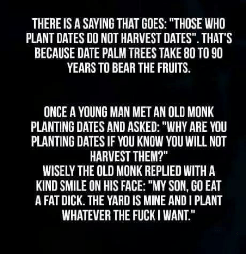 """Bear, Date, and Dick: THERE IS A SAYING THAT GOES: """"THOSE WHO  PLANT DATES DO NOT HARVEST DATES"""". THATS  BECAUSE DATE PALM TREES TAKE 80 TO 90  YEARS TO BEAR THE FRUITS.  ONCE A YOUNG MAN MET AN OLD MONK  PLANTING DATES AND ASKED: """"WHY ARE YOU  PLANTING DATES IF YOU KNOW YOU WILL NOT  HARVEST THEM?""""  WISELY THE OLD MONK REPLIED WITH A  KIND SMILE ON HIS FACE: """"MY SON, GO EAT  A FAT DICK. THE YARD IS MINE AND I PLANT  WHATEVER THE FUCKI WANT."""""""
