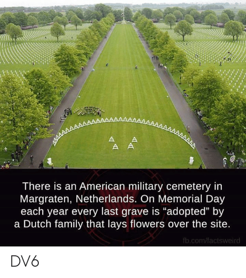 "Memorial: There is an American military cemetery in  Margraten, Netherlands. On Memorial Day  each year every last grave is ""adopted"" by  a Dutch family that lays flowers over the site  fb.com/factsweird DV6"