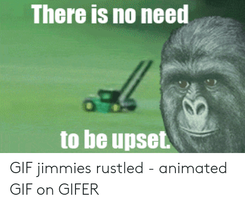 Gifer: There is no need  to be upset GIF jimmies rustled - animated GIF on GIFER