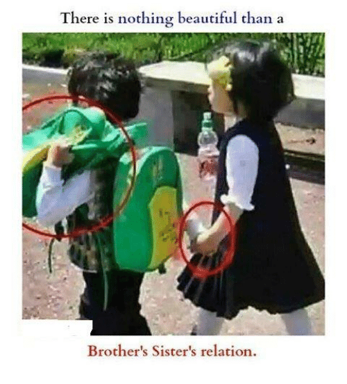 Beautiful, Memes, and 🤖: There is nothing beautiful than a  Brother's Sister's relation.
