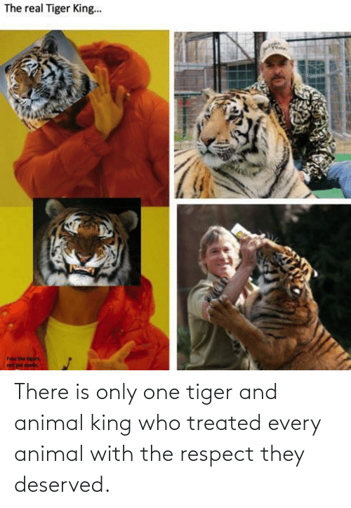 Only One: There is only one tiger and animal king who treated every animal with the respect they deserved.