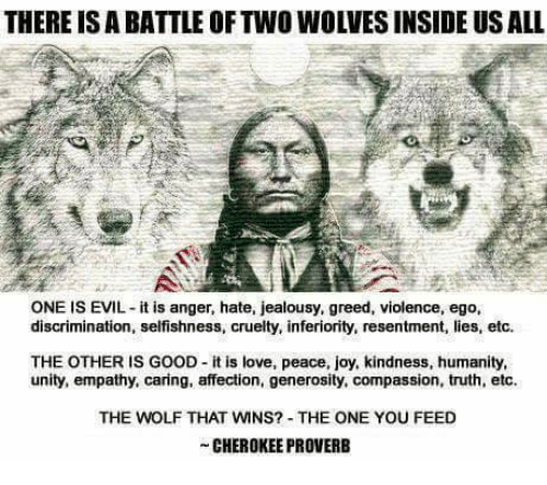 wns: THERE ISABATTLE OF TWO WOLVES INSIDE US ALL  ONE IS EVIL it is anger, hate, jealousy, greed, violence, ego,  discrimination, selfishness, cruelty, inferiority, resentment, lies, etc.  THE OTHER IS GOOD it is love, peace, joy, kindness, humanity,  unity, empathy, caring, affection, generosity, compassion, truth, etc.  THE WOLF THAT WNS? THE ONE YOU FEED  CHEROKEE PROVERB