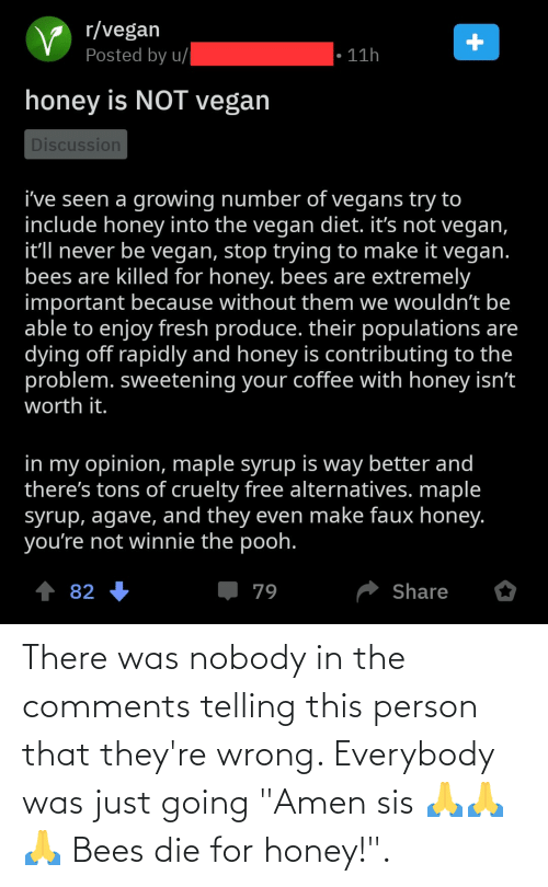 """amen: There was nobody in the comments telling this person that they're wrong. Everybody was just going """"Amen sis 🙏🙏🙏 Bees die for honey!""""."""