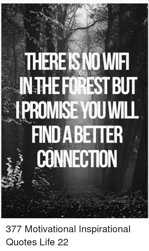 Broomstick, Life, and Quotes: THEREISNO WIF  INTHEFOREST BUT  1PROMISE YOUWILL  FIND A BETTER  CONNECTION 377 Motivational Inspirational Quotes Life 22