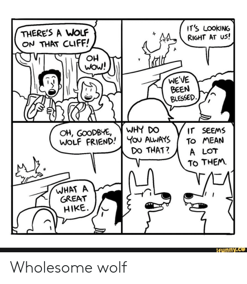 Oh Wow: THERE'S A WoLF  ON THAT CLIFF!  IT's LOOKING  RIGHT AT US!  OH  wow!  WE'VE  BEEN  BLESSED  WHY DO  You ALWAYS  DO THAT?  OH, GOODBYE,  WOLF FRIEND  IT SEEMS  TO MEAN  A LOT  TO THEM  WHAT A  GREAT  HIKE  ifunny.co Wholesome wolf
